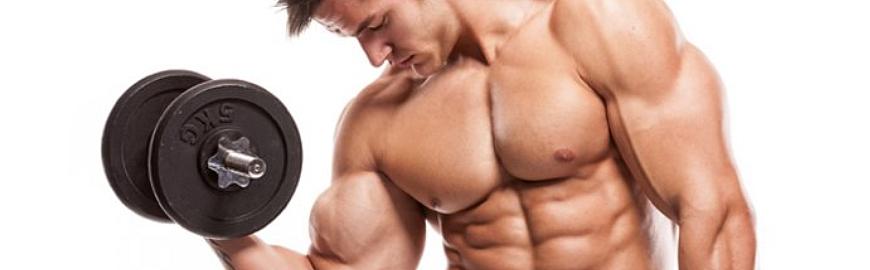 ingrossare-muscoli