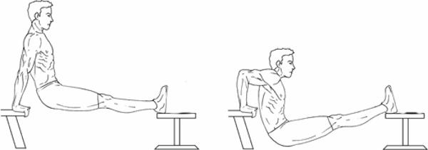 bench-dip-con-panca